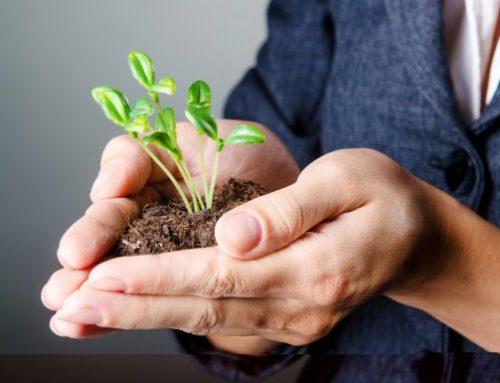 Aanvullend pensioen bedrijven en zelfstandigen